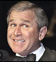 Bush Dumb